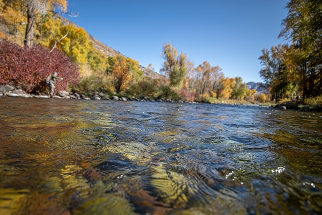 Blue sky on The Roaring Fork River